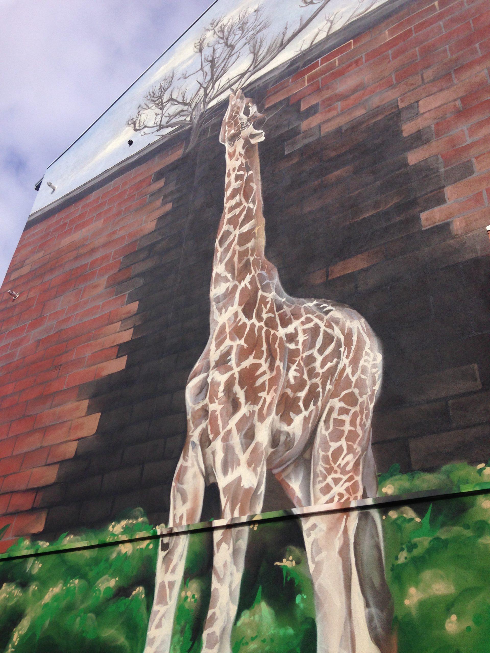 Giraffe mural Glasgow