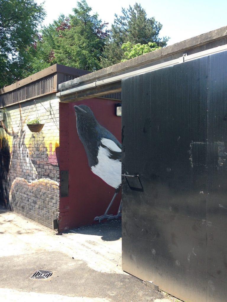 Magpie street art