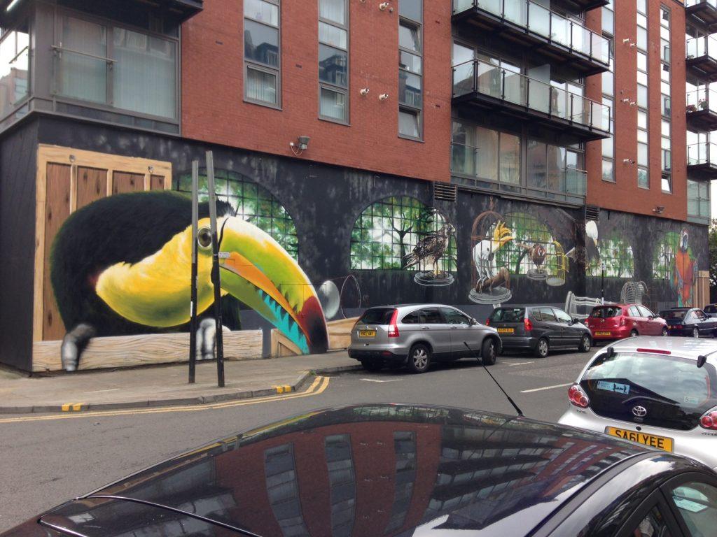 Toucan street art