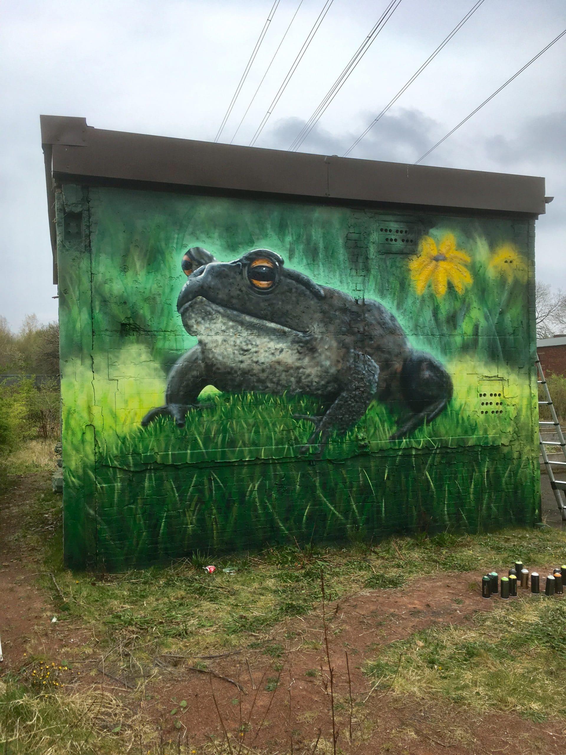 frog mural Ruchill