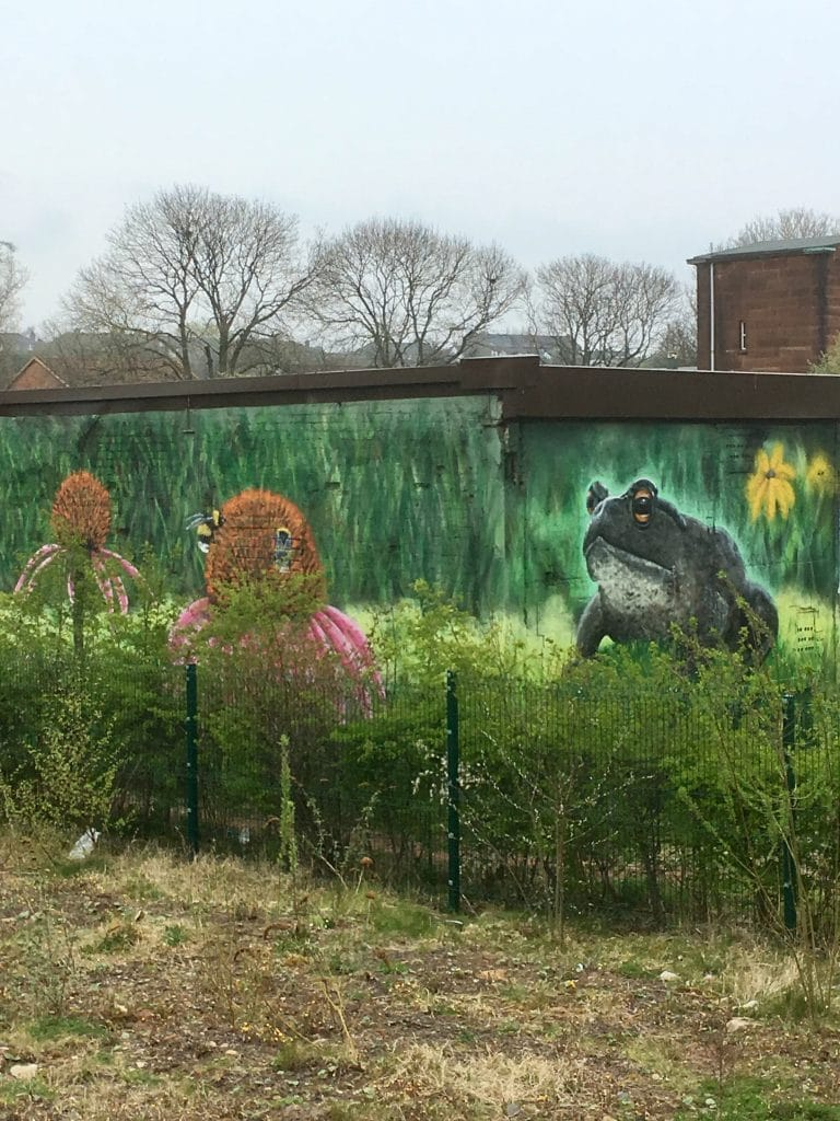 frog and bee mural Ruchill