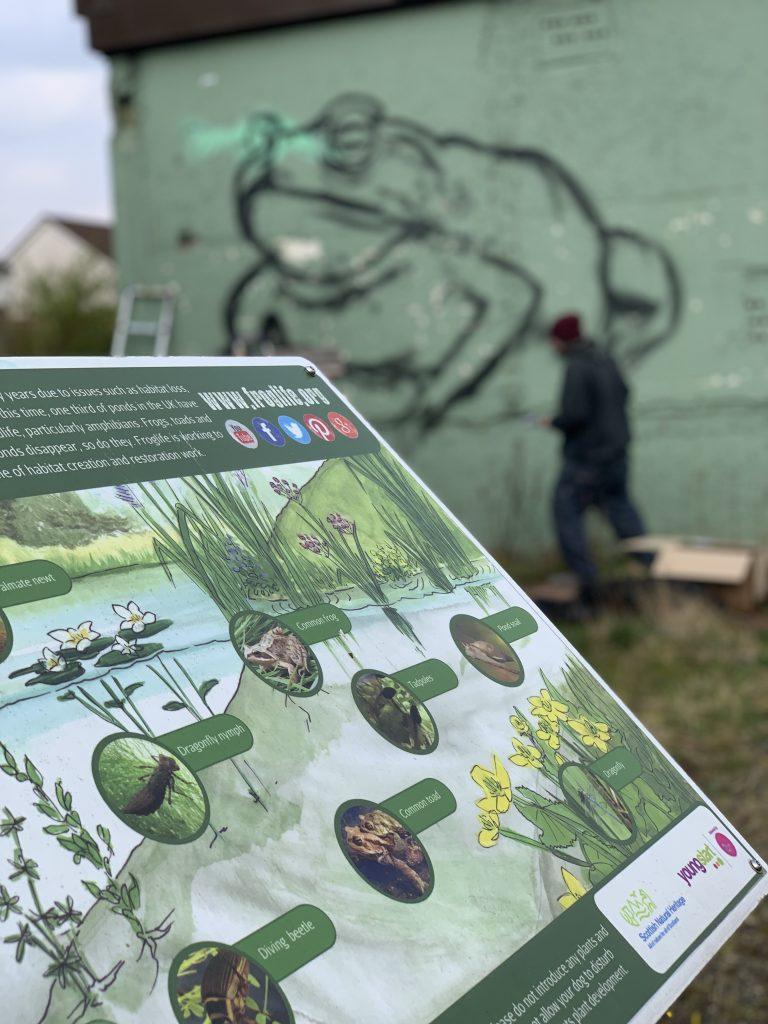 frog pond mural