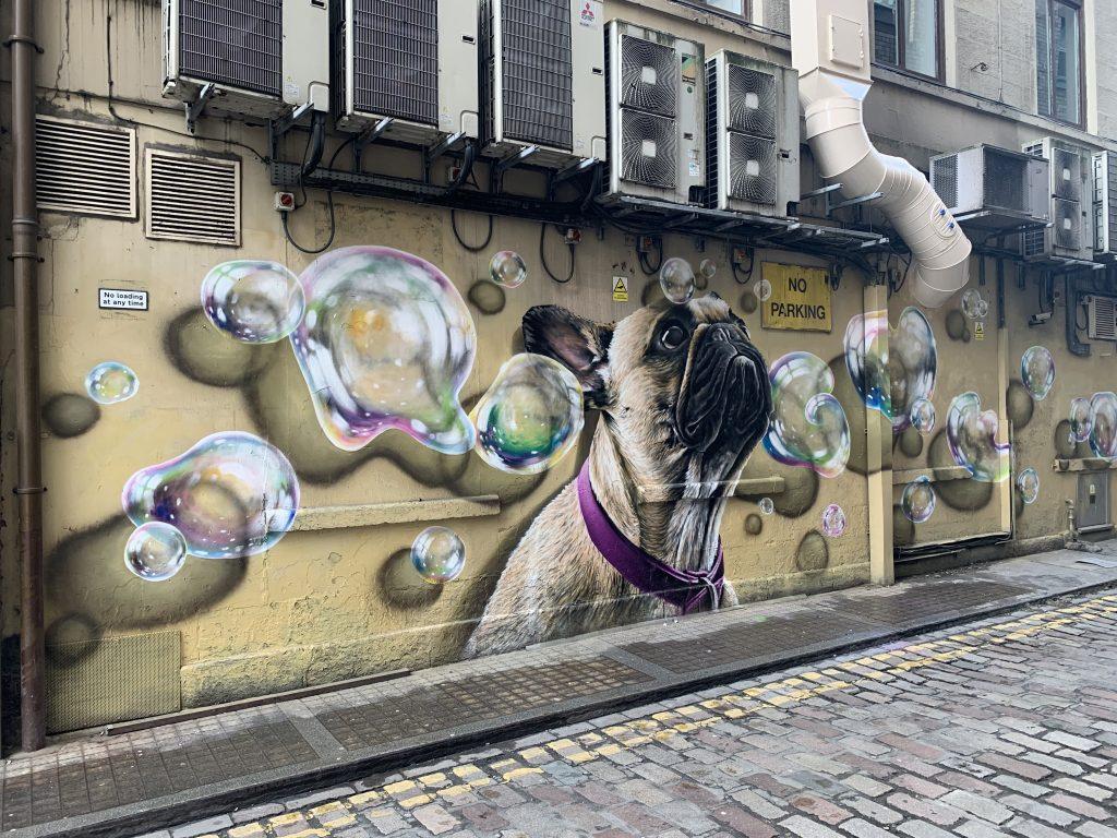 dog street art Renfield Lane Glasgow