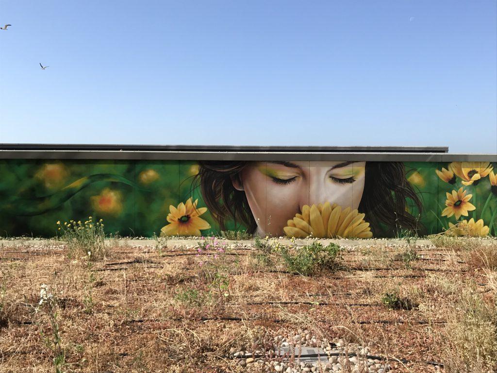 Female and flowers street art