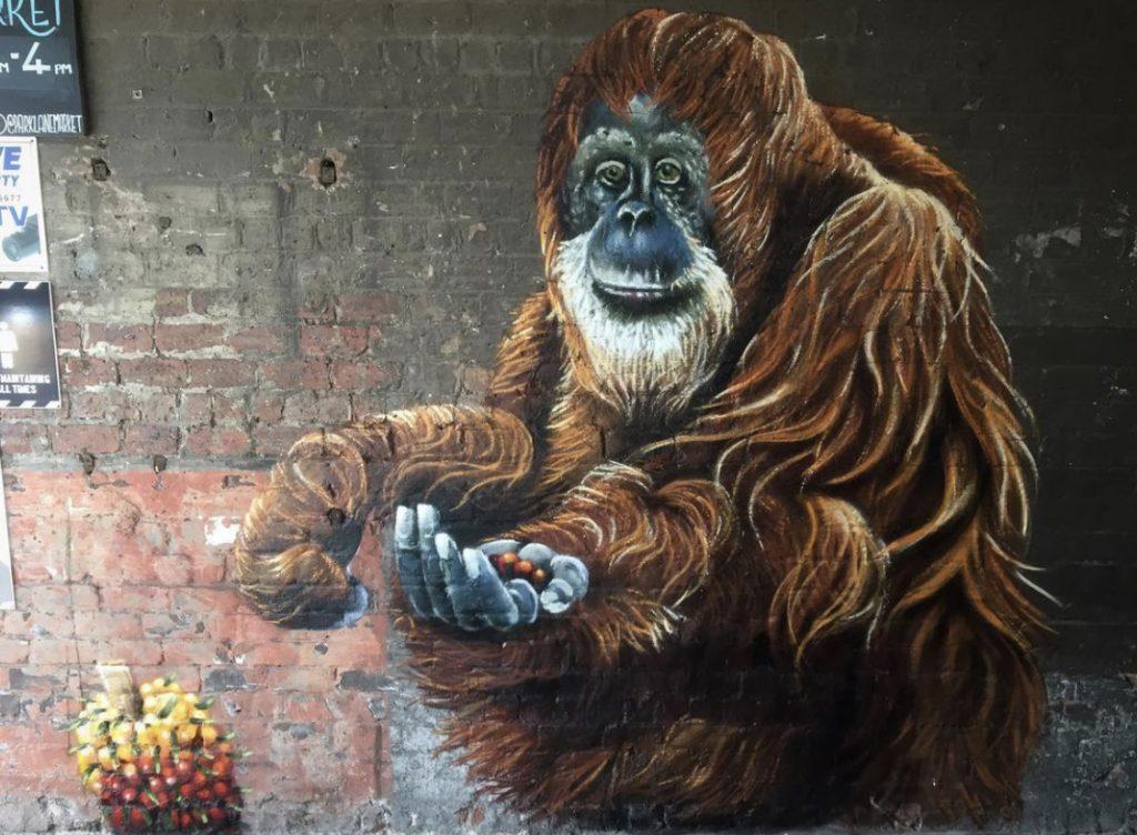 Monkey mural Glasgow