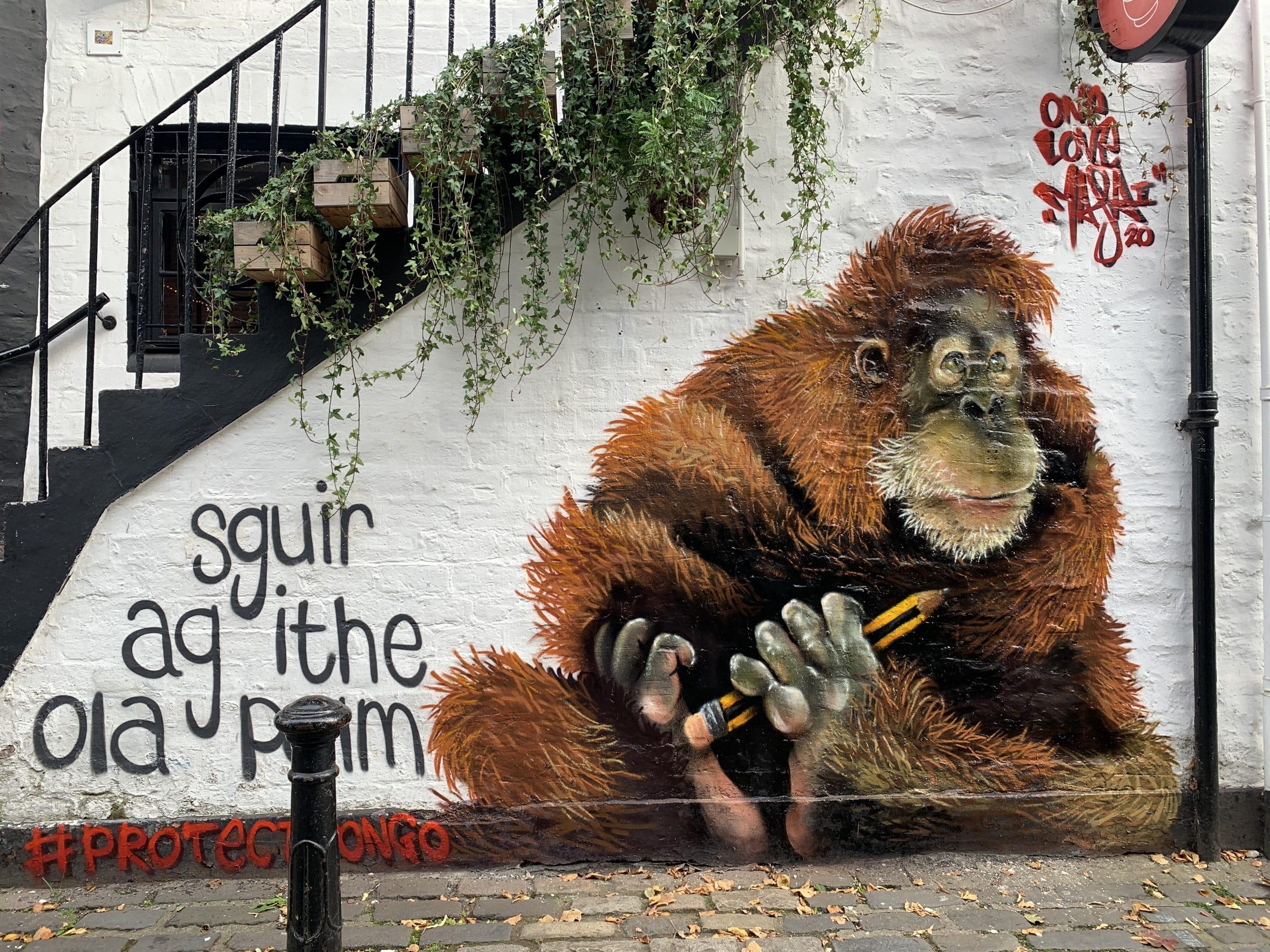Orangutan Street Art